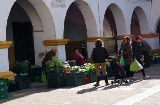 Uno de los pocos hortelanos que quedan vendiendo en la plaza de Béjar