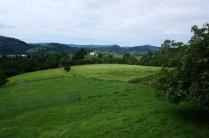 El verde los valles