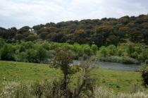 Río Águeda