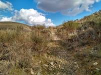Camino Villarejo