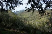 Valle Malvecino
