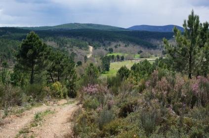 El valle y la sierra